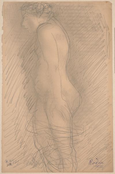 nue debout, de profi l à gauche, papier vélin, crayon au graphite – estompe, Musée Rodin, Paris. © Musée Rodin, Jean de Calan